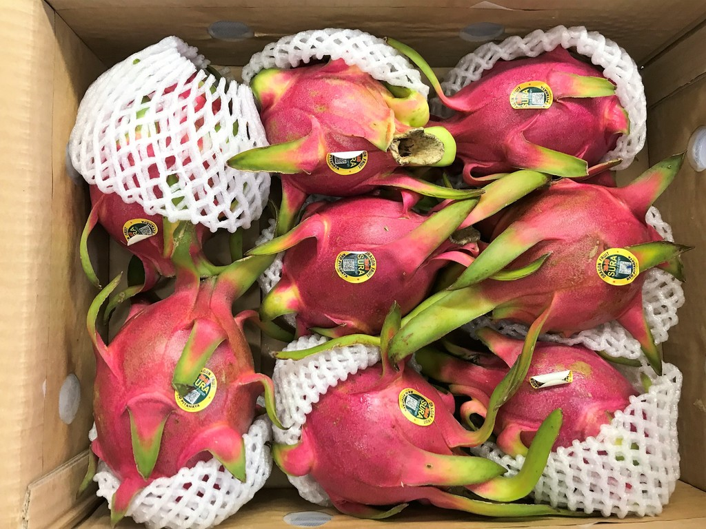 Raw Dragon Fruit