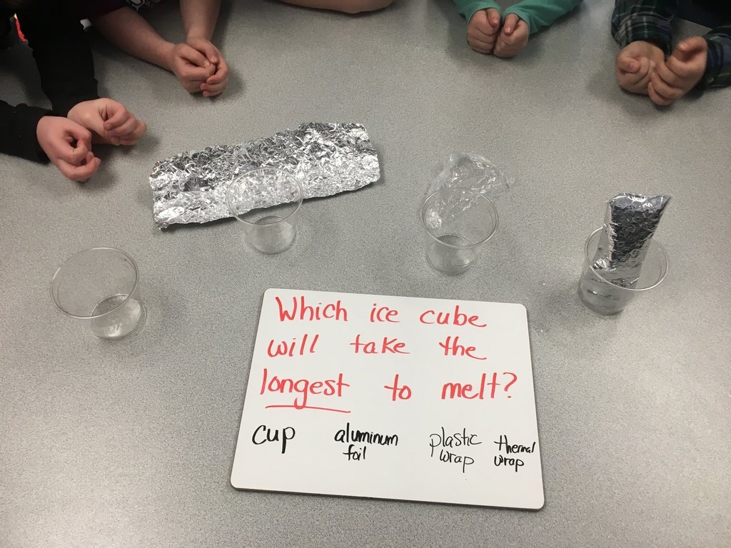 First grade experiments with ice.